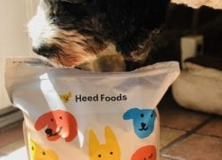 heed-food-review-daisy