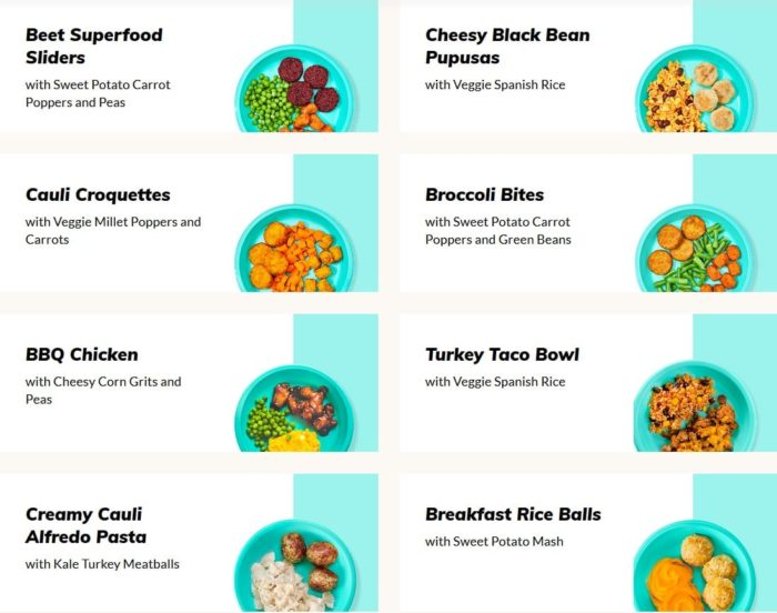 little-spoon-plates-menu-little spoon plates and blends reviews-mealfinds