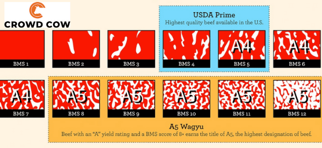 japanese-beef-rating-system