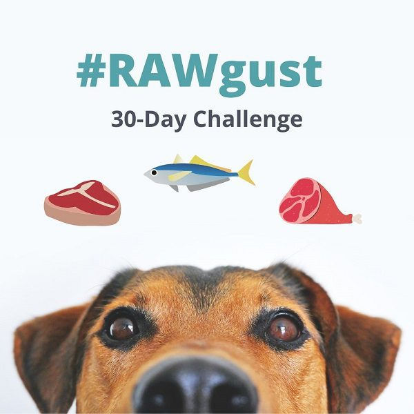 rawgust 30 day challenge - mealfinds