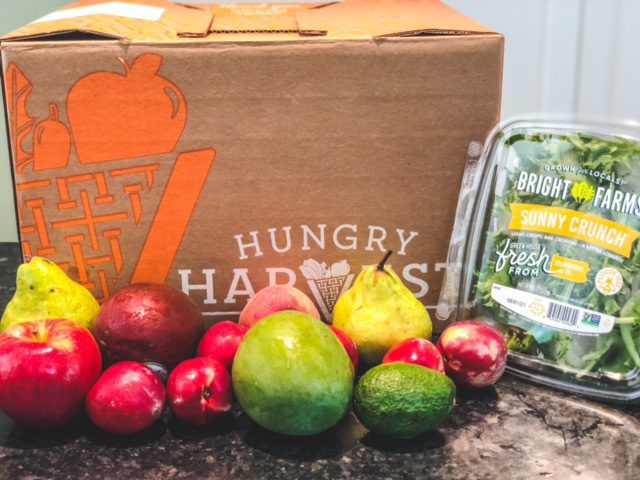 hungry harvest mini box - hungry harvest reviews-mealfinds