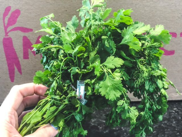 cilantro being held-imperfect foods review-mealfinds